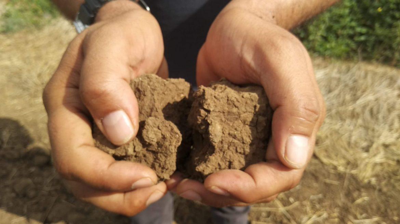 להיות מטפל אדמה